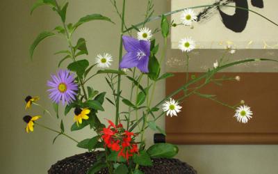 Arrange flowers as if they were growing wild in a field