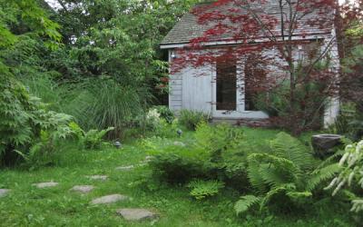 About my garden