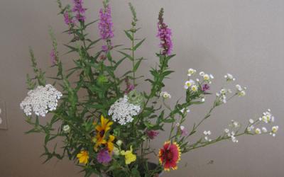 How to arrange flowers