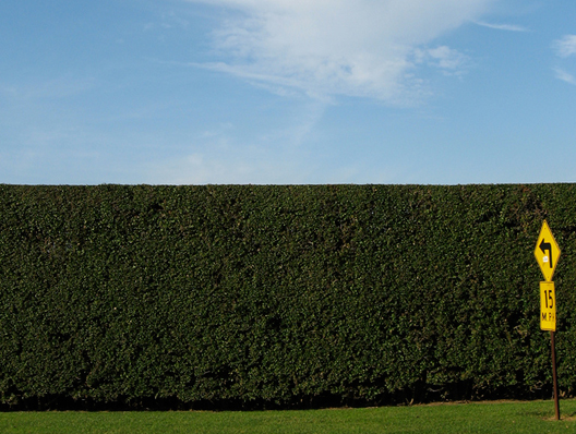 hamptonhedges