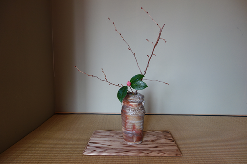 Same branch of Cherry. Different Camellia and vase. This Shigaraki style vase is by Sue Kotulek