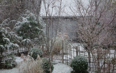 First winter storm